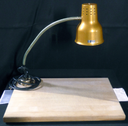 Carving Station with Heat Lamp